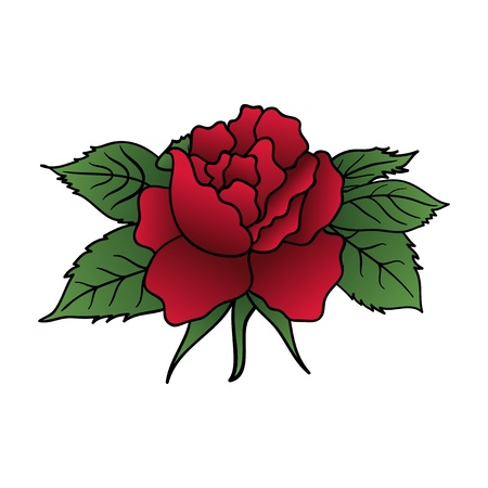 dog rose: Illustration beautiful red rose isolated - vector