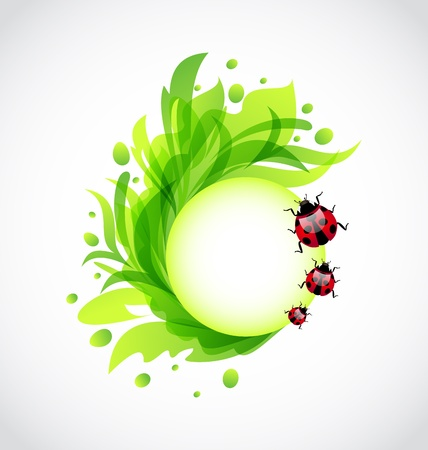 Illustration eco floral transparent background with ladybugs - vector Vector