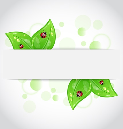 Illustration eco green leaves with ladybugs sticking out of the cut paper Stock Vector - 13865189
