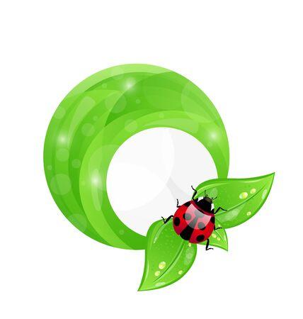 Illustration green round frame with leaf elements and ladybug, eco friendly background  illustration