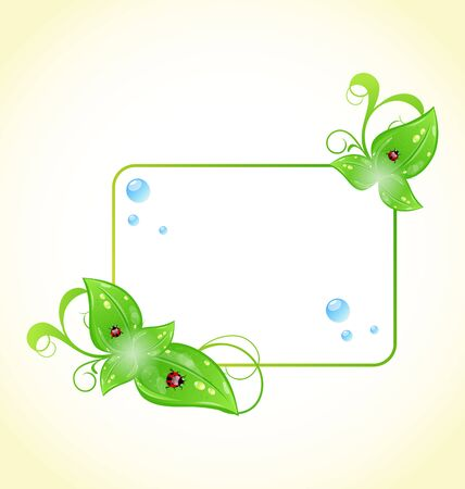 Illustration eco friendly frame with green leaves and ladybugs Stock Illustration - 14492772