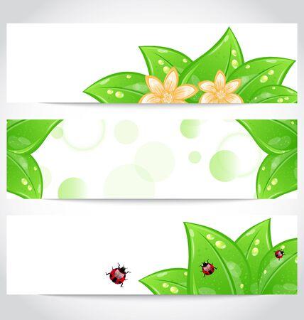 Illustration set of bio concept design eco friendly banners (2)  illustration