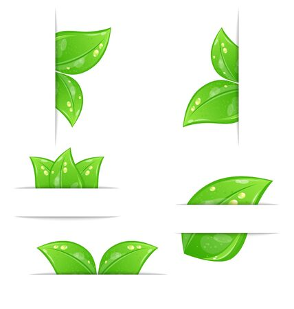 Illustration set of green ecological labels with leaves isolated on white background  Stock Illustration - 14492796