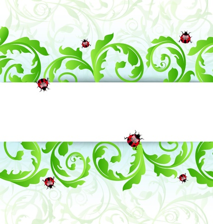 Illustration eco friendly background with ladybugs