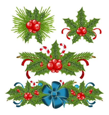 Illustration set holly berry sprigs for christmas decorations   illustration