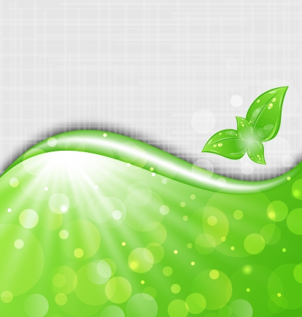 Illustration eco friendly background with leaves - vector Vector