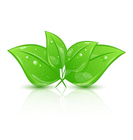 Illustration green eco leaves  Stock Illustration - 18433837