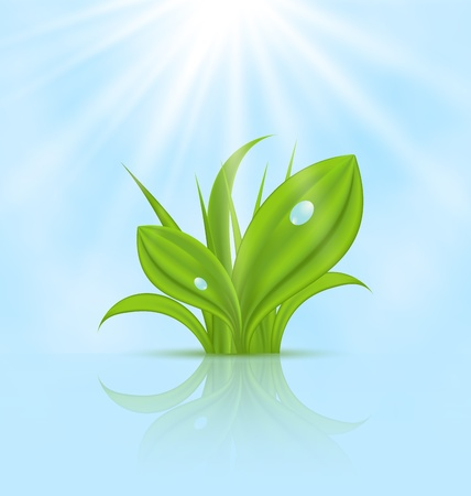 Illustration spring wallpaper with green grass Stock Illustration - 18433925
