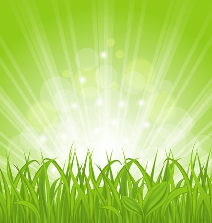 wallpaper vibrant: Illustration spring background with green grass