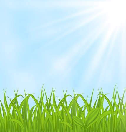 Illustration spring background with green grass  illustration
