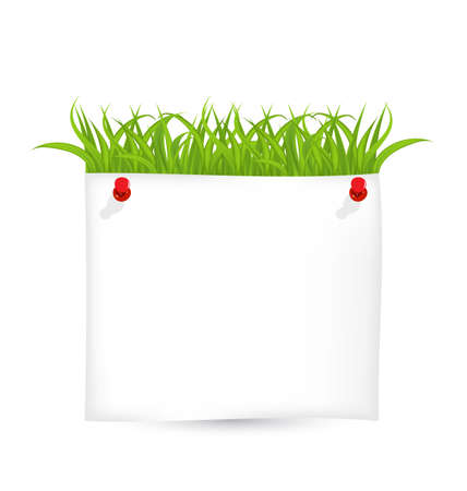 Illustration paper sheet with green grass  Stock Illustration - 18433835