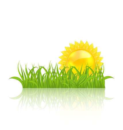 Illustration meadow with green grass and yellow sun - vector Stock Illustration - 19676378
