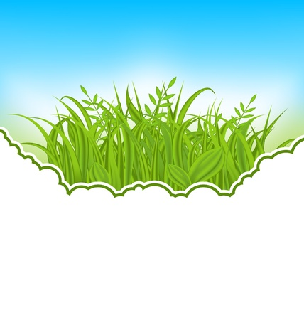 Illustration nature card with green grass - vector Stock Illustration - 19676383
