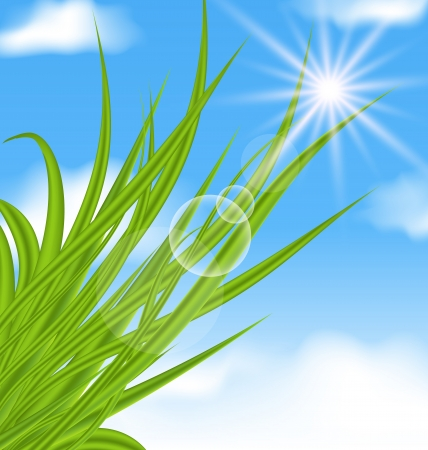 Illustration natural illuminated background with green grass - vector Stock Illustration - 20137659