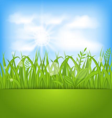 Illustration spring beautiful card, natural background - vector Stock Illustration - 20137657