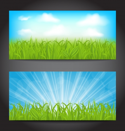Illustration set summer cards with grass, natural backgrounds - vector illustration