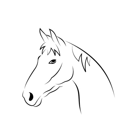 Illustration outline head horse isolated on white background
