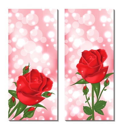 Illustration set of beautiful cards with red roses - vector illustration