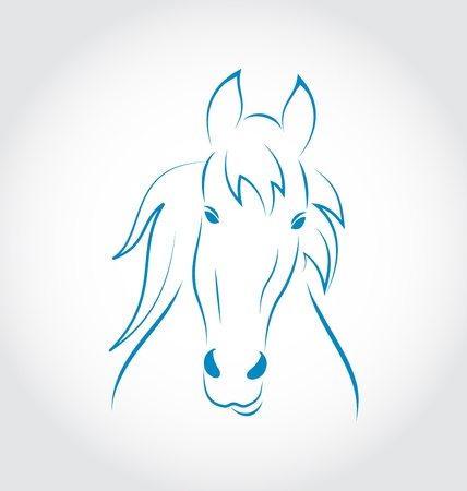 Illustration symbol outline head horse isolated on white background - vector illustration