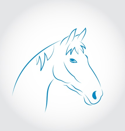horsehair: Illustration hand drawn head horse isolated on white background - vector