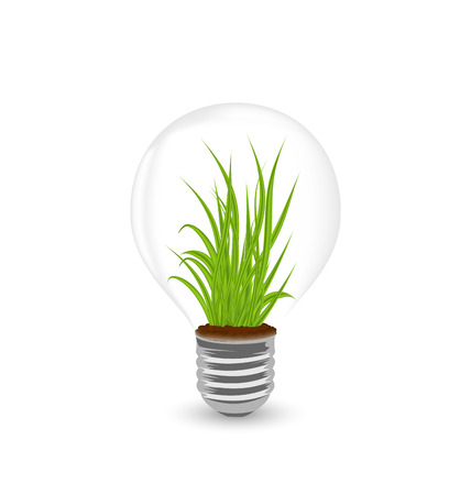 germinating: Illustration lamp with grass inside isolated on white background - vector Illustration