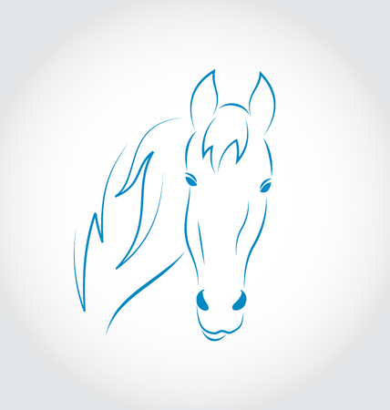 Illustration hand drawn head horse isolated on white background - vector Vector