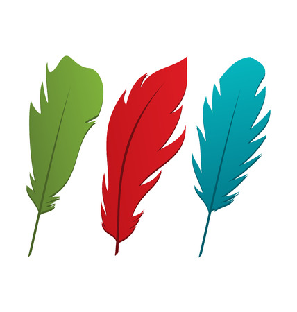 quill pen: Illustration set colorful feathers isolated on white background - vector