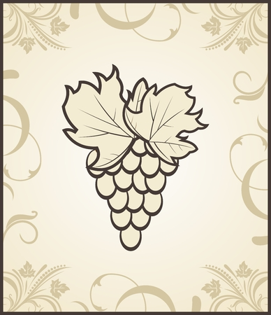 Illustration retro engraving of grapevine - vector Vector