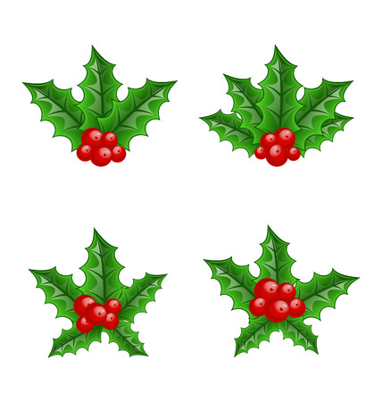 holly leaves: Illustration Christmas set holly berry branches isolated on white background - vector