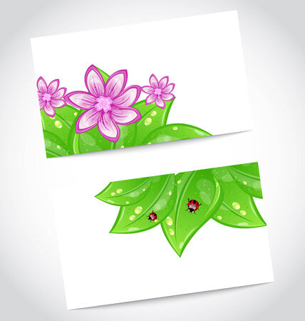 Illustration set of eco friendly cards with green leaves, concept design  - vector Vector
