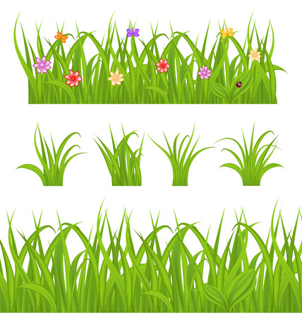 Illustration set green grass isolated on white background - vector Vector
