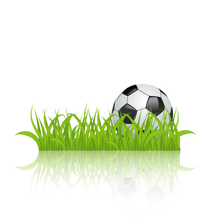 Illustration soccer ball on grass isolated on white background - vector Vector