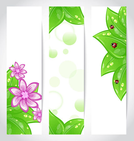Illustration set of bio concept design eco friendly banners - vector Vector