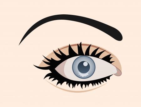 close up eye: Illustration close up eye isolated - vector