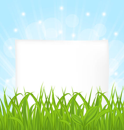 Illustration natural card with green grass and paper sheet - vector Vector
