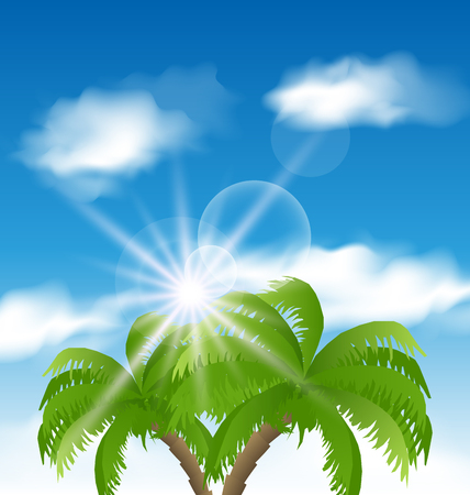 palmtree: Illustration summer holiday background with sunlight and palmtree - vector