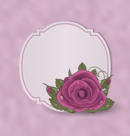 Illustration vintage card with pink roses - vector Vector