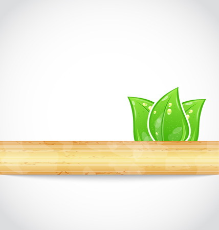 Illustration natural background with eco green leaves and wood - vector Vector