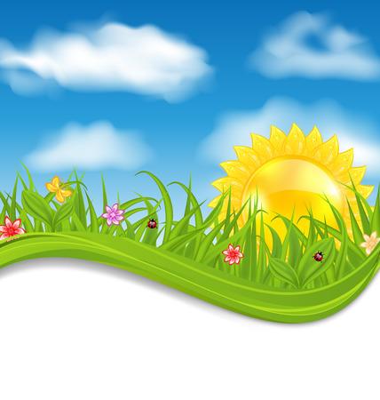 Illustration summer card with sky, cloud, sun, grass, flower, butterfly, ladybug - vector