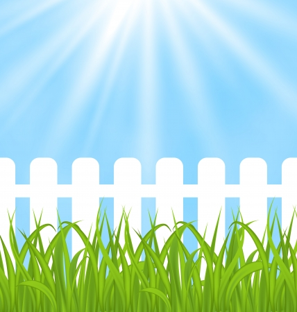 Illustration fresh green grass over wood fence background  - vector Vector