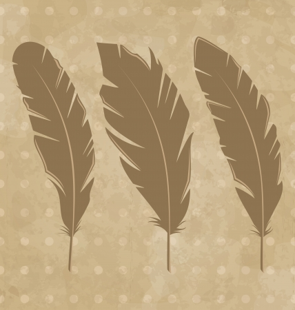 Illustration set vintage feathers on grunge background - vector Vector