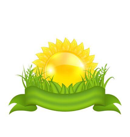 Illustration nature symbols -  sun, green leaves, grass, ribbon - vector Vector