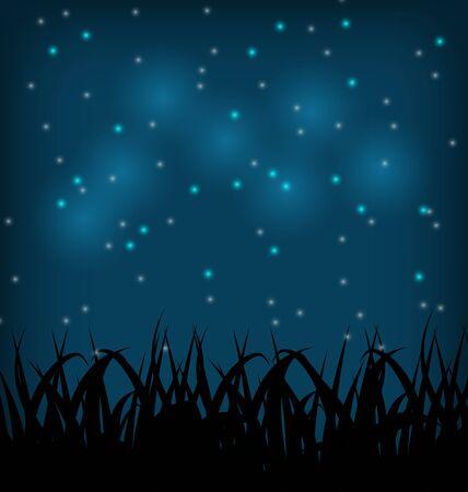speelveld gras: Illustratie nachtelijke hemel met gras veld - vector