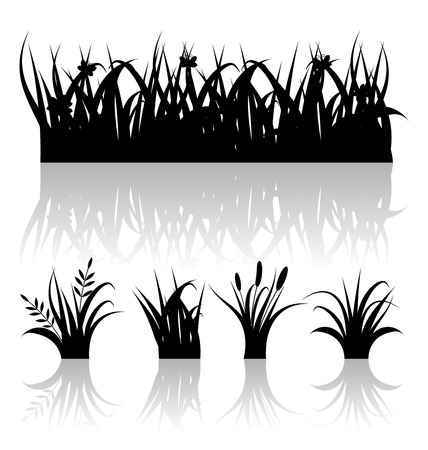 reflection of life: Illustration set silhouette of grass with reflection isolated on white background  Illustration