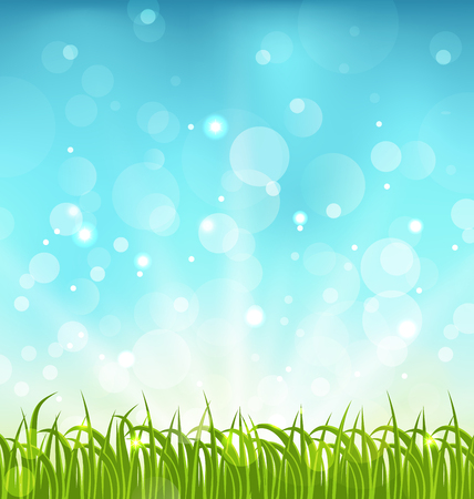 Illustration summer nature background with grass - vector Vector
