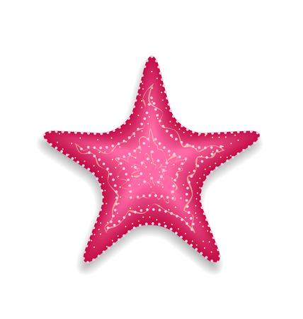 invertebrate: Illustration pink starfish isolated on white background - vector