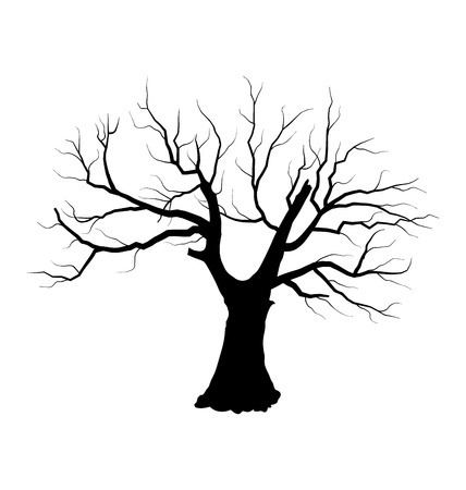 Illustration sketch of dead tree without leaves Vector