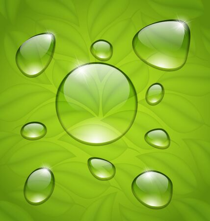 limpid: Illustration water drops on fresh green leaves texture - vector Illustration