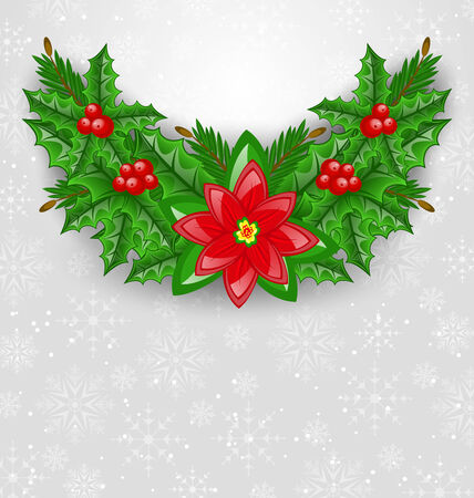 aquifolium: Illustration Christmas decoration with holly berry, pine and poinsettia