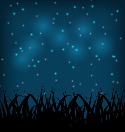 grass field: Illustration night sky with grass field - vector Stock Photo